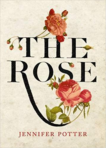 The Rose by Jennifer Potter