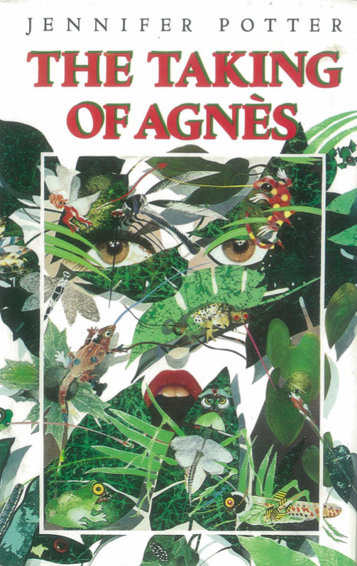 The Taking of Agnes by Jennifer Potter